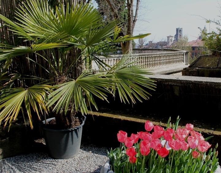 Ботанический сад Бергамо