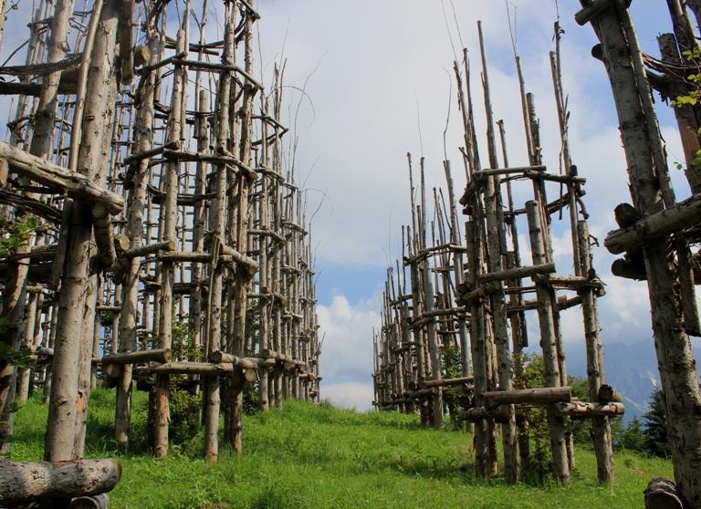 храм из деревьев бергамо, собор из деревьев в городе Бергамо